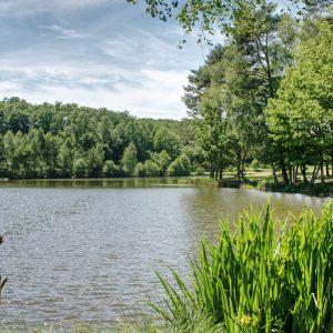 Plan d'eau du Moulin du Teil