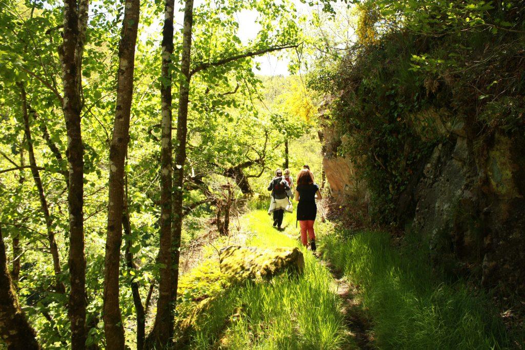 randonnées gorges de la cère cantal
