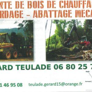 TEULADE Gérard