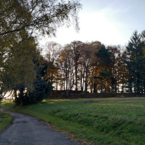 Parcours de santé de Montsalvy