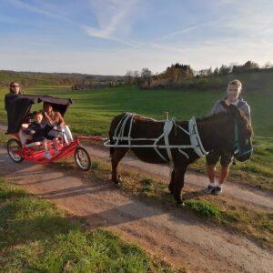 Aux Bergers d'Espradel – Balade avec des ânes